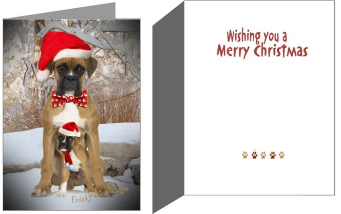 Boxer dog pup Christmas Cards - Boxers @ DogBreed-Gifts.com, Boxer Christmas Cards, Ornaments