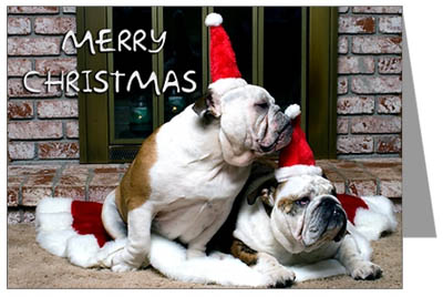 Christmas Pet Cards Santa Claus And Christmas