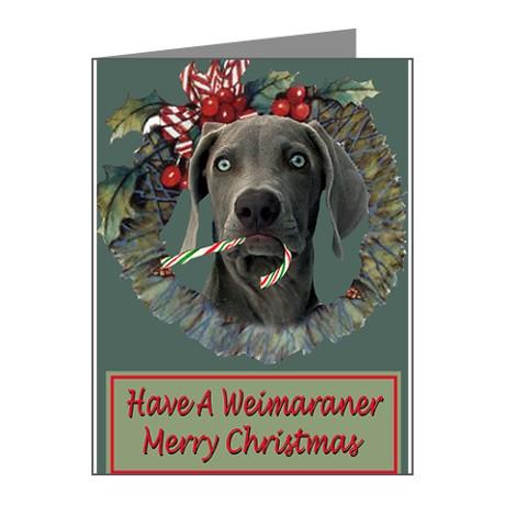 weimaranr christmas cards, Weimaraner ... - The Weimaraner Shop - Christmas Cards And Holiday Decor